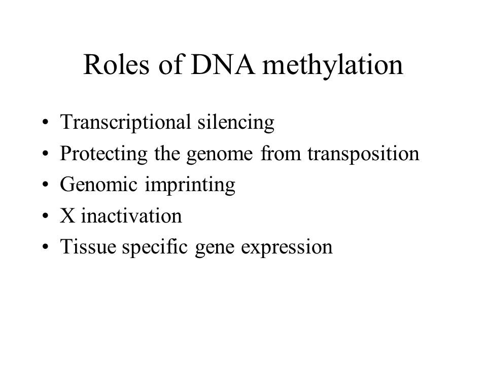Imprinting is maintained by DNA methylation