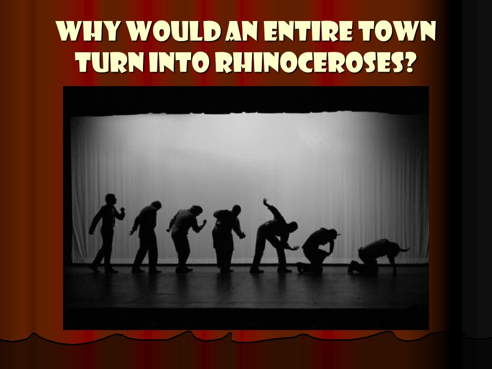 WHY WOULD AN ENTIRE TOWN TURN INTO RHINOCEROSES?