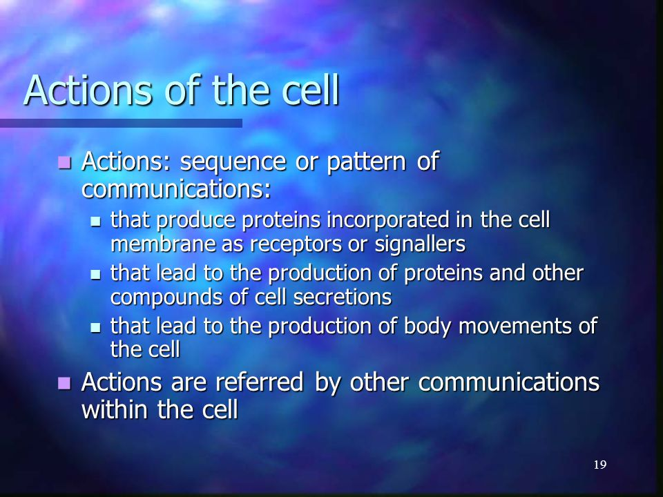 19 Actions of the cell Actions: sequence or pattern of communications: Actions: sequence or pattern of communications: that produce proteins incorpora