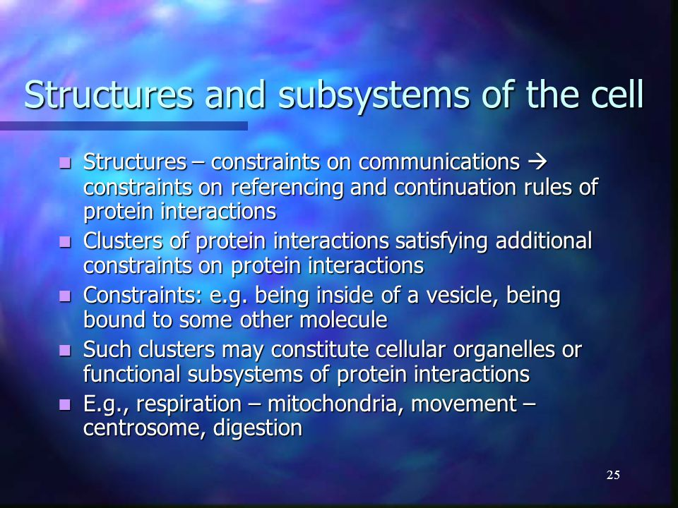 25 Structures and subsystems of the cell Structures – constraints on communications  constraints on referencing and continuation rules of protein int