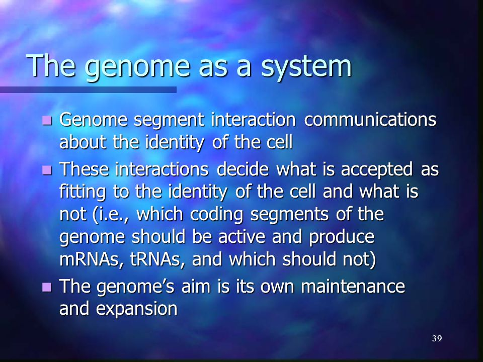 39 The genome as a system The genome as a system Genome segment interaction communications about the identity of the cell Genome segment interaction c