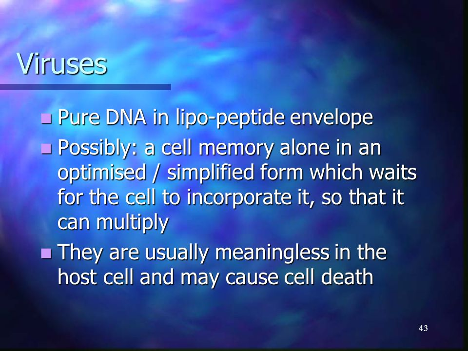 43 Viruses Pure DNA in lipo-peptide envelope Pure DNA in lipo-peptide envelope Possibly: a cell memory alone in an optimised / simplified form which w
