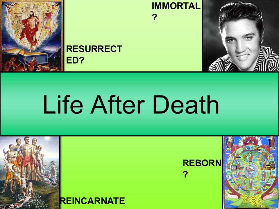 Life After Death IMMORTAL ? RESURRECT ED? REINCARNATE D? REBORN ?