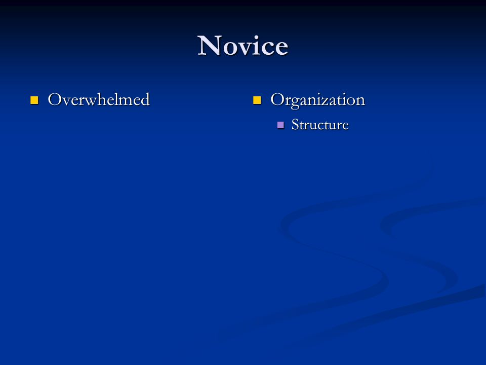 Novice Organization Structure