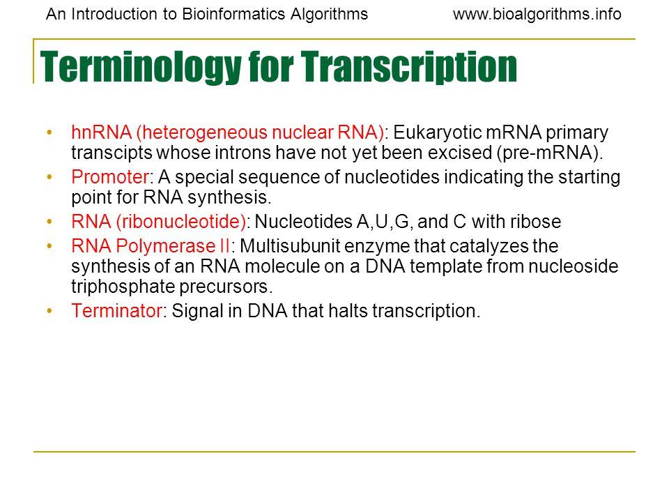 An Introduction to Bioinformatics Algorithmswww.bioalgorithms.info Terminology for Transcription hnRNA (heterogeneous nuclear RNA): Eukaryotic mRNA pr