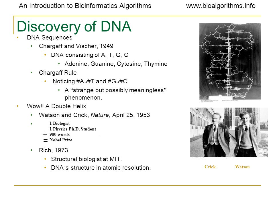 An Introduction to Bioinformatics Algorithmswww.bioalgorithms.info Discovery of DNA DNA Sequences Chargaff and Vischer, 1949 DNA consisting of A, T, G