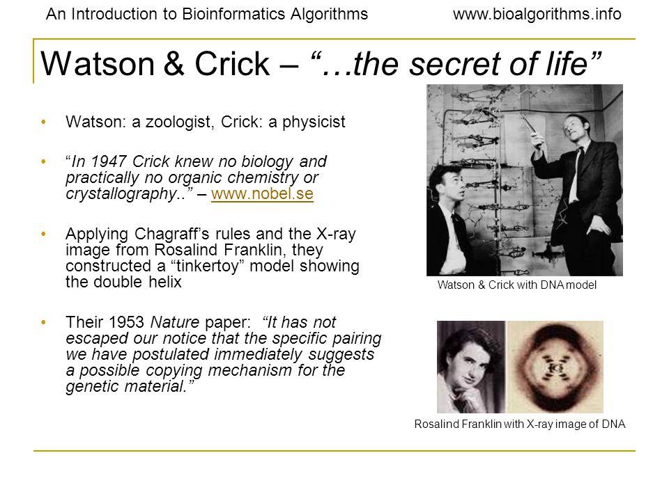 "An Introduction to Bioinformatics Algorithmswww.bioalgorithms.info Watson & Crick – ""…the secret of life"" Watson: a zoologist, Crick: a physicist ""In"