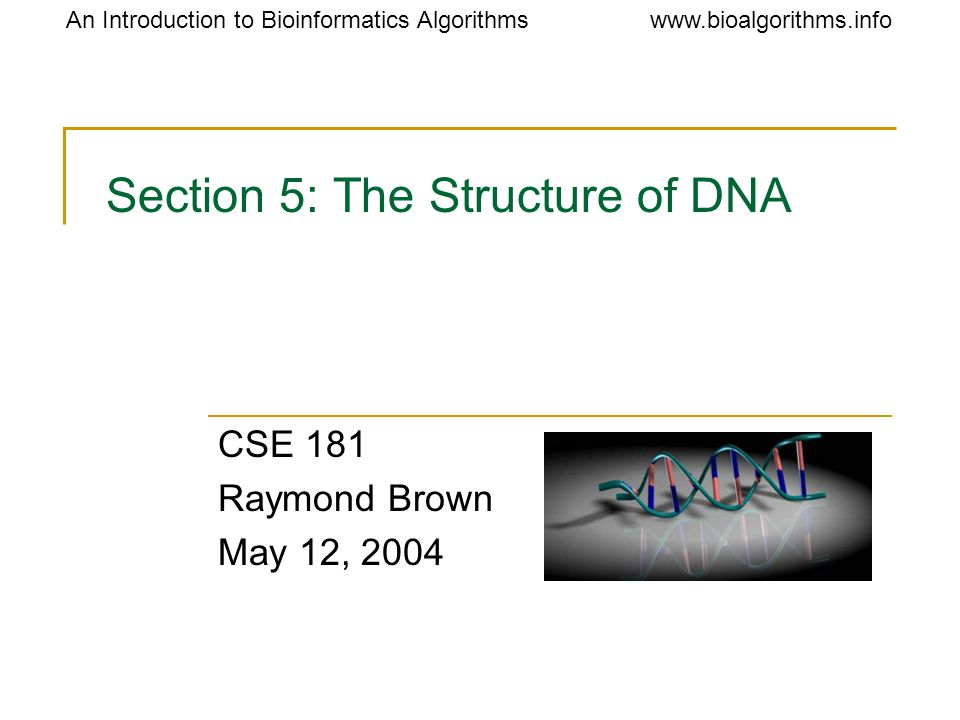 www.bioalgorithms.infoAn Introduction to Bioinformatics Algorithms Section 5: The Structure of DNA CSE 181 Raymond Brown May 12, 2004