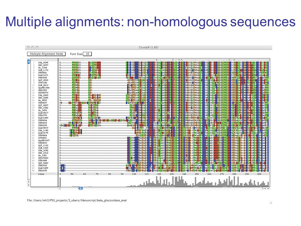 Multiple alignments: non-homologous sequences