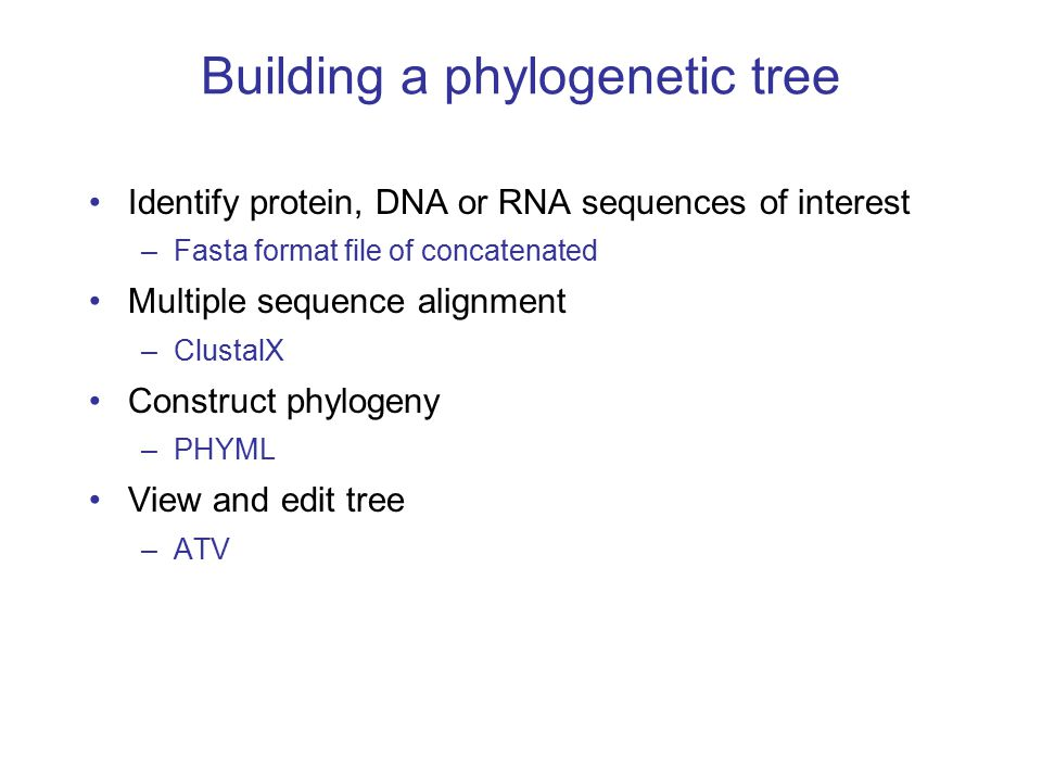 Building a phylogenetic tree Identify protein, DNA or RNA sequences of interest –Fasta format file of concatenated Multiple sequence alignment –ClustalX Construct phylogeny –PHYML View and edit tree –ATV