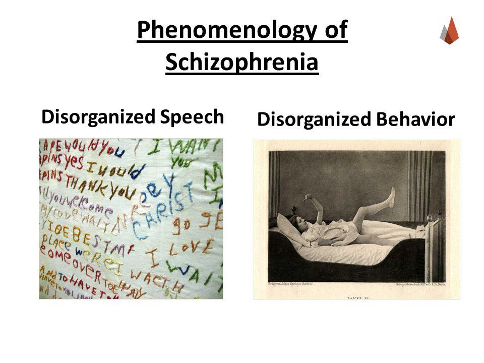 Phenomenology of Schizophrenia Disorganized Speech Disorganized Behavior