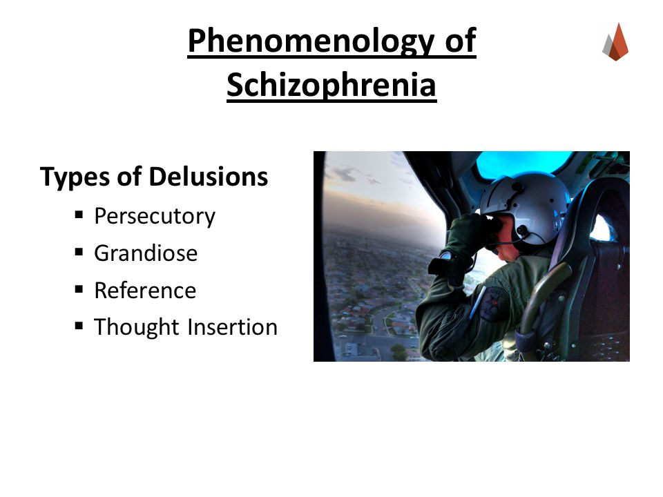 Phenomenology of Schizophrenia Types of Delusions  Persecutory  Grandiose  Reference  Thought Insertion