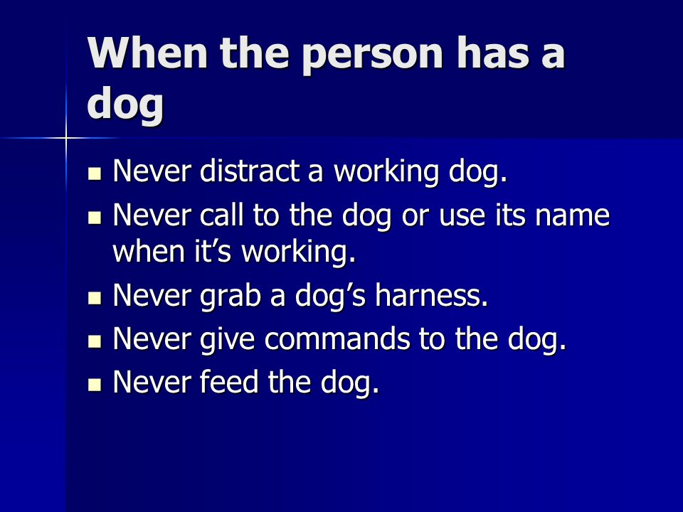 When the person has a dog Never distract a working dog. Never distract a working dog. Never call to the dog or use its name when it's working. Never c