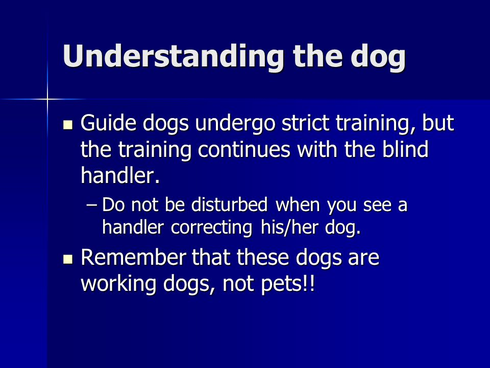 Understanding the dog Guide dogs undergo strict training, but the training continues with the blind handler.