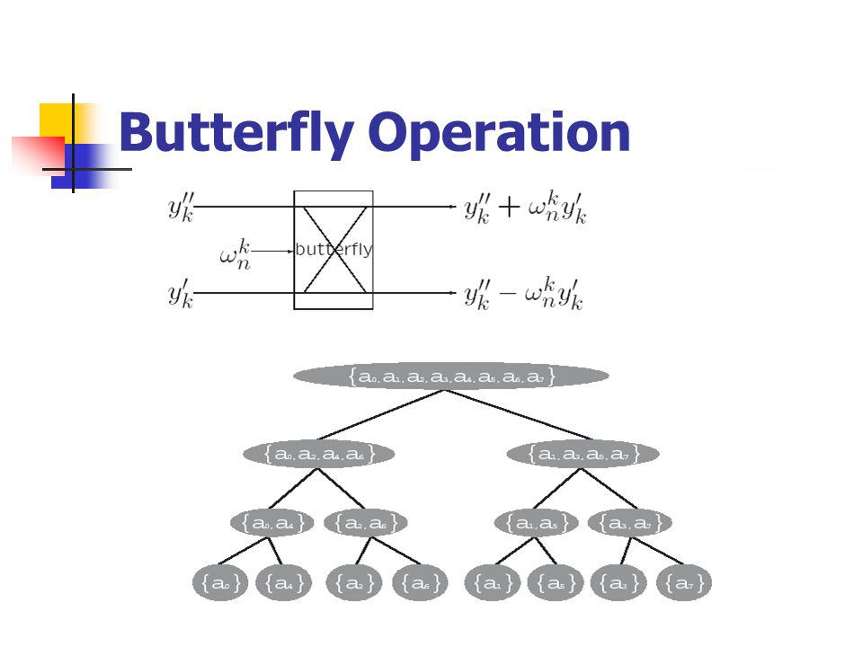 Butterfly Operation