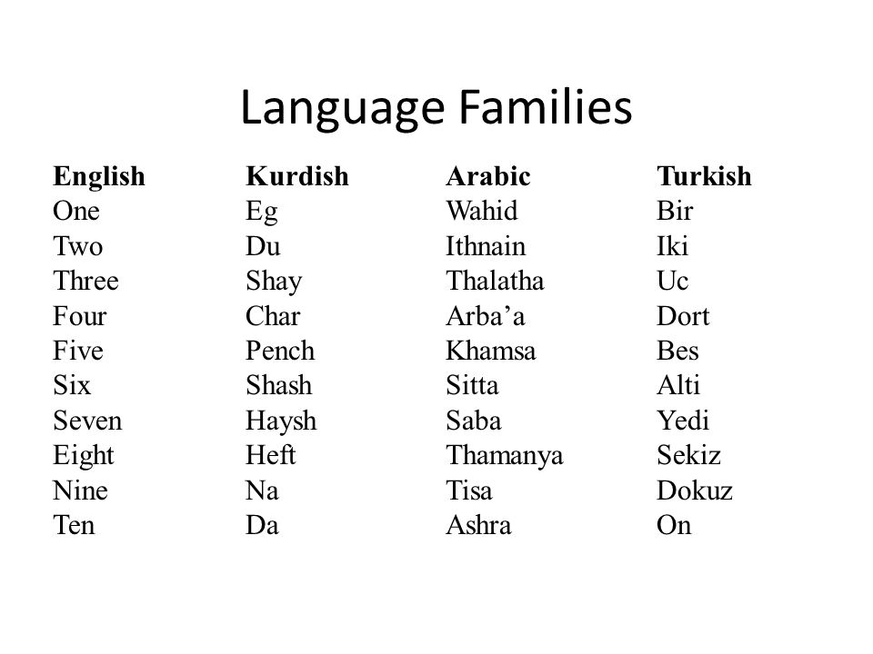 Language Families Arabic Wahid Ithnain Thalatha Arba'a Khamsa Sitta Saba Thamanya Tisa Ashra Kurdish Eg Du Shay Char Pench Shash Haysh Heft Na Da English One Two Three Four Five Six Seven Eight Nine Ten Turkish Bir Iki Uc Dort Bes Alti Yedi Sekiz Dokuz On