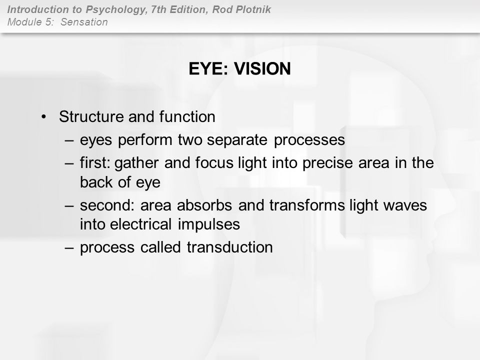 Introduction to Psychology, 7th Edition, Rod Plotnik Module 5: Sensation Visual pathways: eye to brain –Primary visual cortex the backs of the occipitals lobes is where primary visual cortex transforms nerve impulses into simple visual sensations –Visual association areas the primary visual cortex sends simple visual sensations to neighboring association areas EYE: VISION