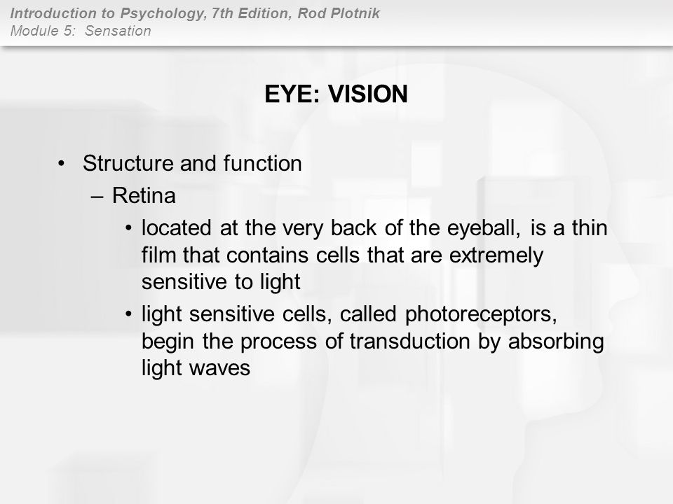 Introduction to Psychology, 7th Edition, Rod Plotnik Module 5: Sensation p108 SKIN