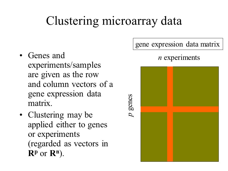 Clustering microarray data Genes and experiments/samples are given as the row and column vectors of a gene expression data matrix.