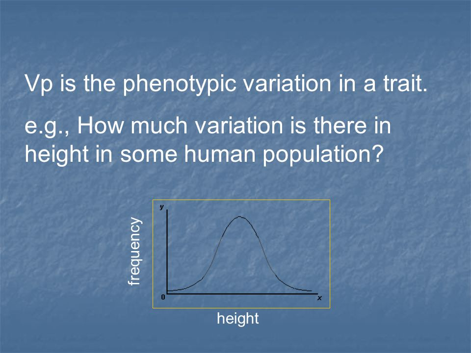 Vp is the phenotypic variation in a trait. e.g., How much variation is there in height in some human population? height frequency