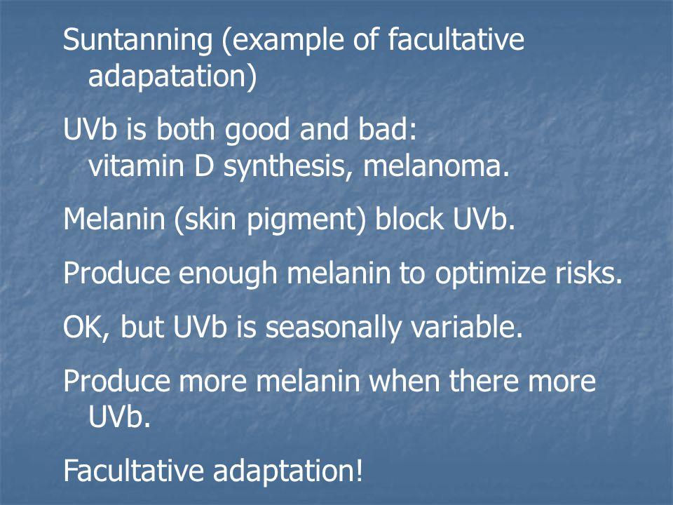 Suntanning (example of facultative adapatation) UVb is both good and bad: vitamin D synthesis, melanoma. Melanin (skin pigment) block UVb. Produce eno