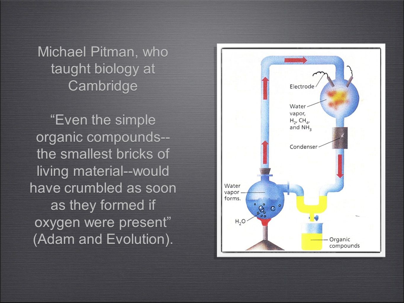 Michael Pitman, who taught biology at Cambridge Even the simple organic compounds-- the smallest bricks of living material--would have crumbled as soon as they formed if oxygen were present (Adam and Evolution).