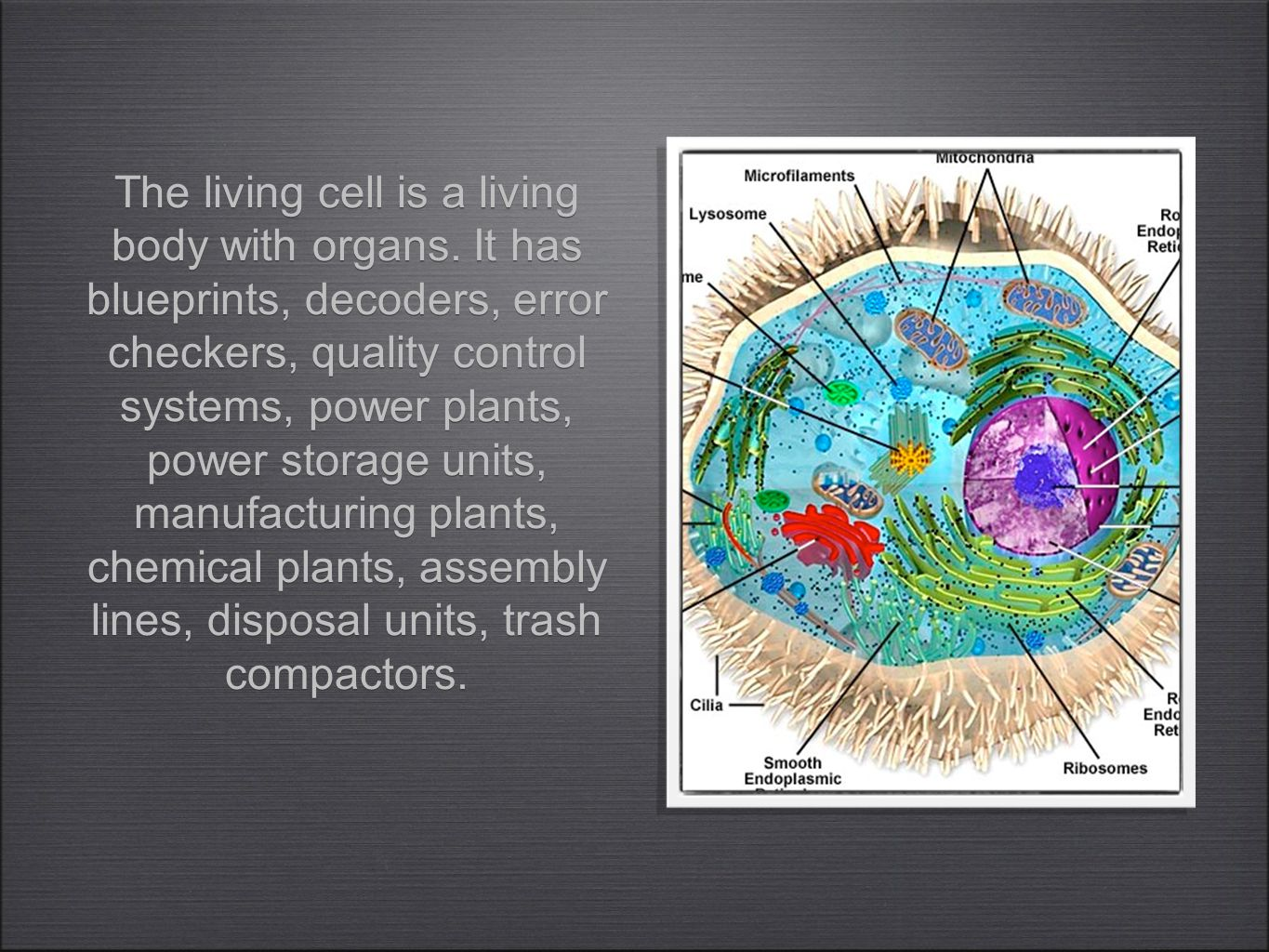 The living cell is a living body with organs.