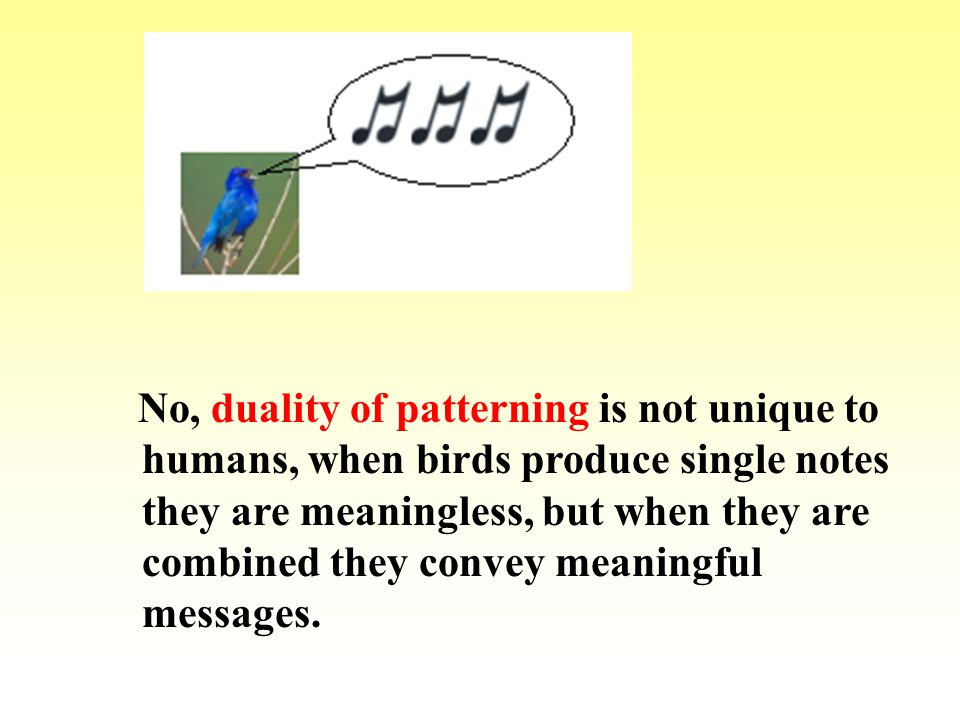 No, duality of patterning is not unique to humans, when birds produce single notes they are meaningless, but when they are combined they convey meanin