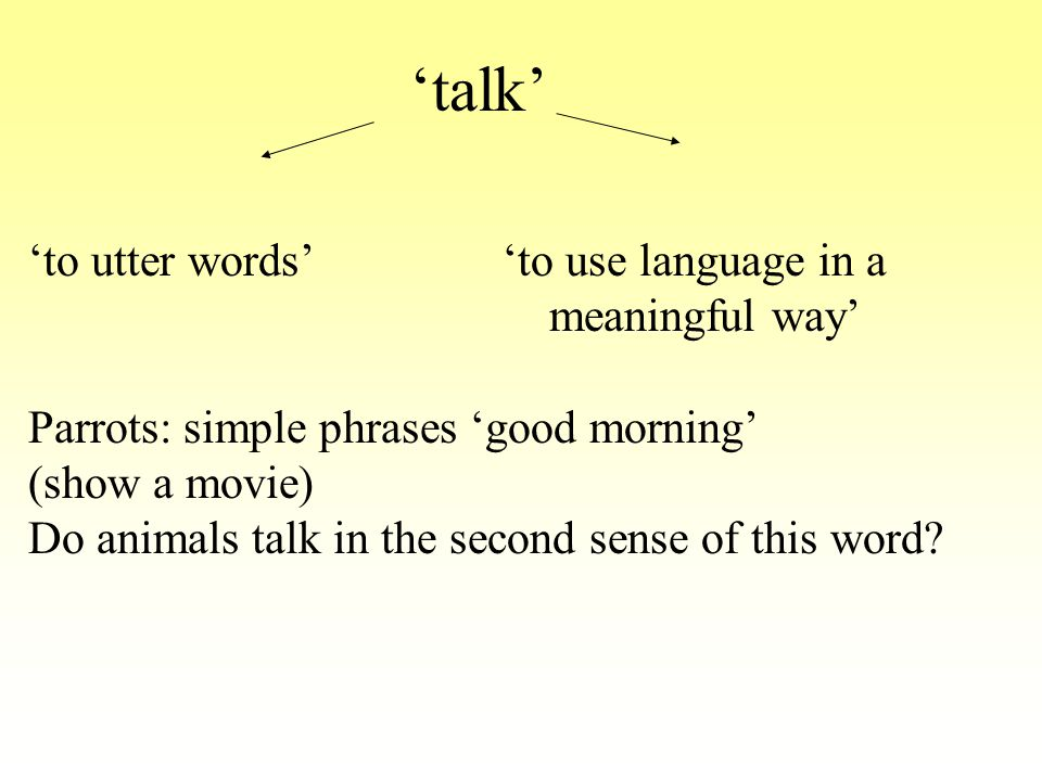 'to utter words' 'to use language in a meaningful way' Parrots: simple phrases 'good morning' (show a movie) Do animals talk in the second sense of th