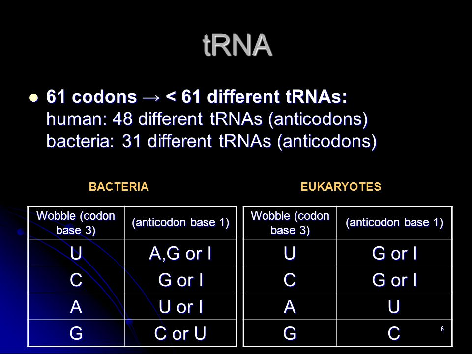 6 tRNA 61 codons → < 61 different tRNAs: human: 48 different tRNAs (anticodons) bacteria: 31 different tRNAs (anticodons) 61 codons → < 61 different tRNAs: human: 48 different tRNAs (anticodons) bacteria: 31 different tRNAs (anticodons) (anticodon base 1) Wobble (codon base 3) G or I U C UA CG (anticodon base 1) Wobble (codon base 3) A,G or I U G or I C U or I A C or U G BACTERIAEUKARYOTES