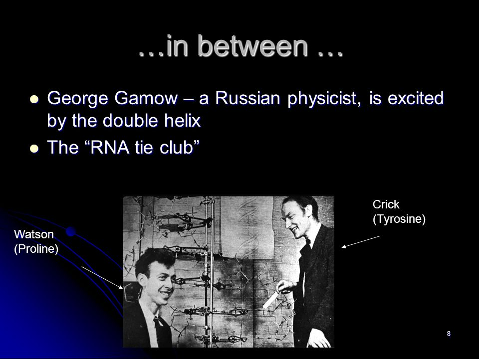 8 …in between … George Gamow – a Russian physicist, is excited by the double helix George Gamow – a Russian physicist, is excited by the double helix The RNA tie club The RNA tie club Watson (Proline) Crick (Tyrosine)
