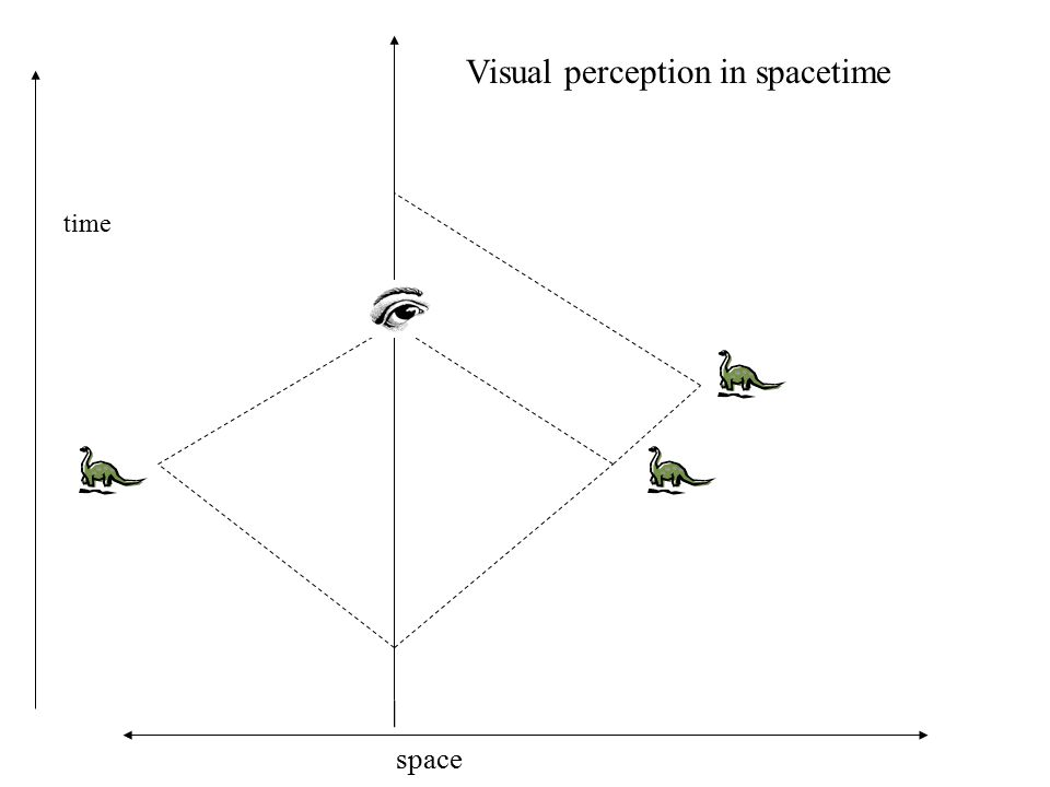 time space Visual perception in spacetime