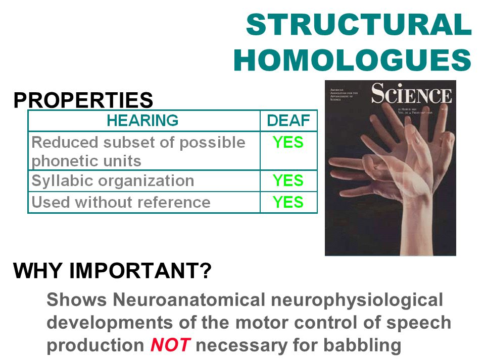 DISCOVERY OF STRUCTURAL HOMOLOGUES PROPERTIES WHY IMPORTANT.