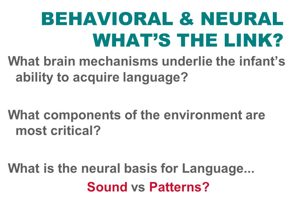 BEHAVIORAL & NEURAL WHAT'S THE LINK? What brain mechanisms underlie the infant's ability to acquire language? What components of the environment are m