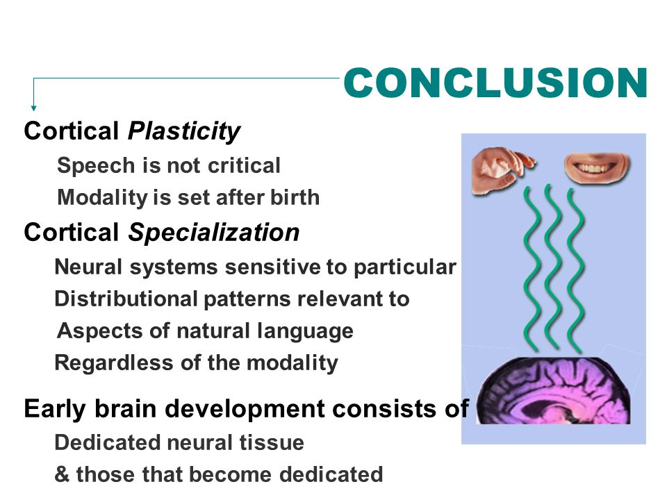 CONCLUSION Cortical Plasticity Speech is not critical Modality is set after birth Cortical Specialization Neural systems sensitive to particular Distr