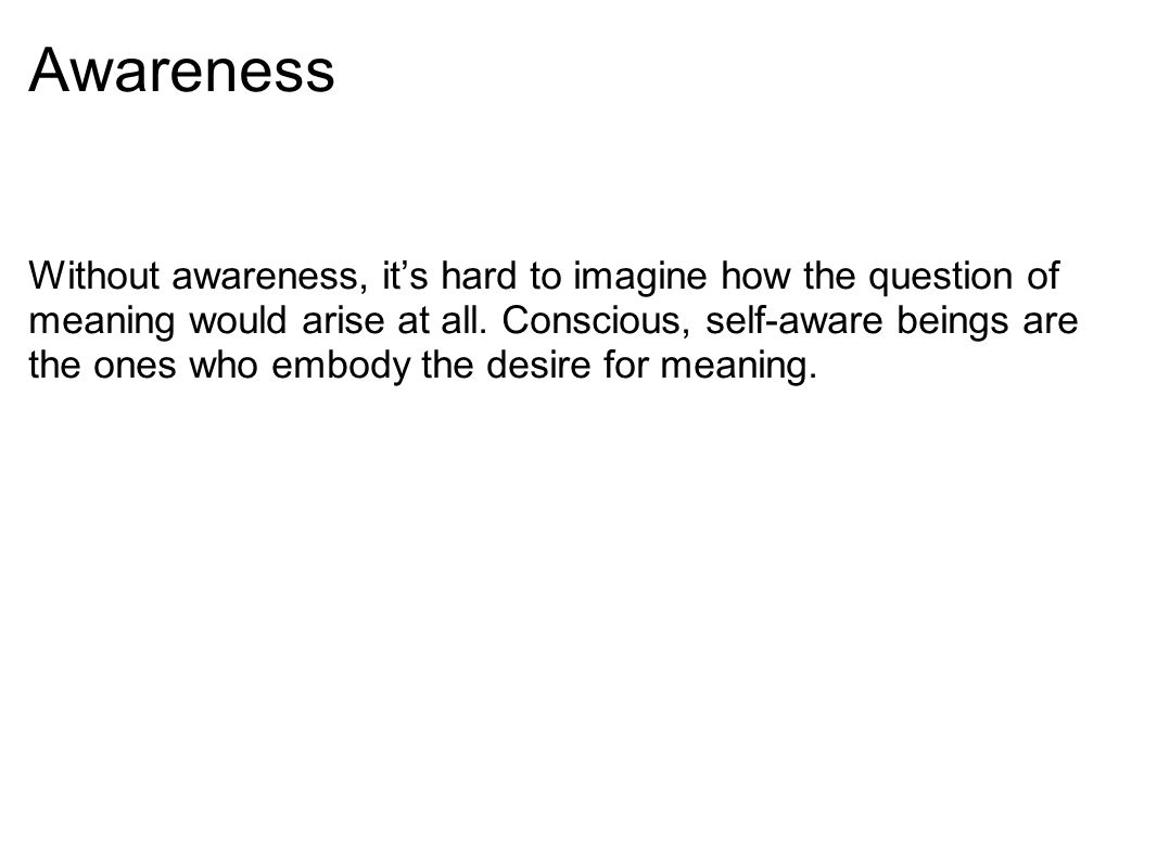 Awareness Without awareness, it's hard to imagine how the question of meaning would arise at all.