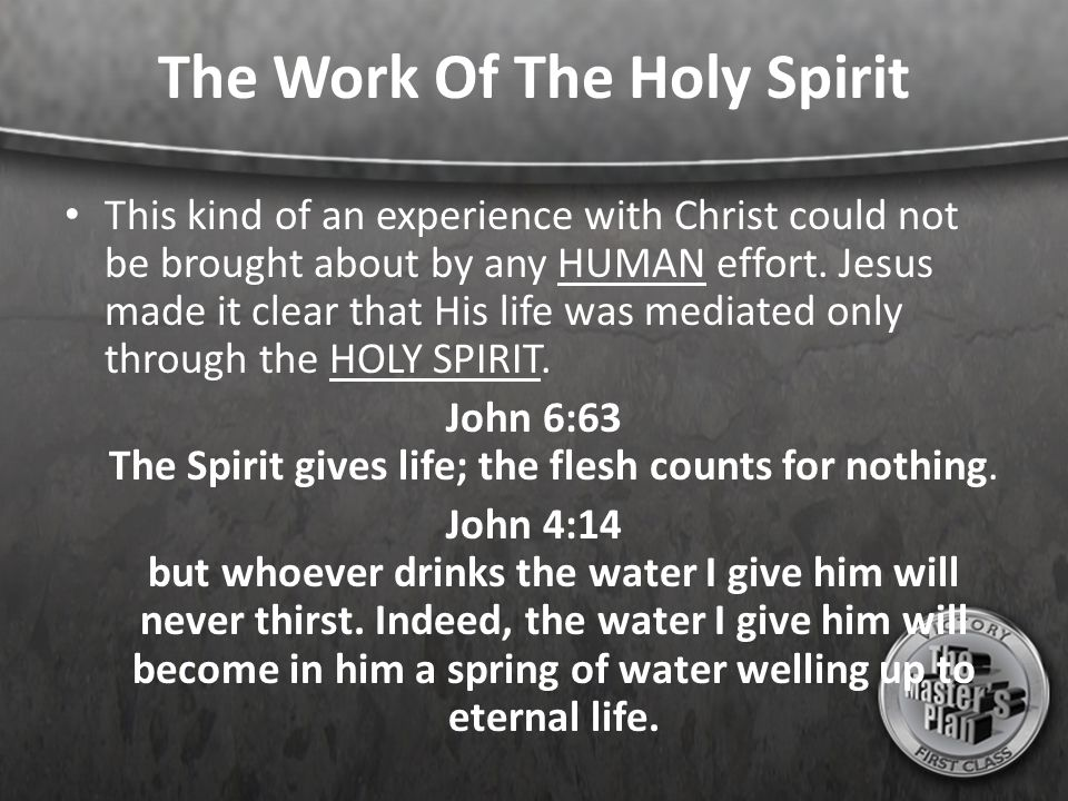 The Work Of The Holy Spirit This kind of an experience with Christ could not be brought about by any HUMAN effort. Jesus made it clear that His life w