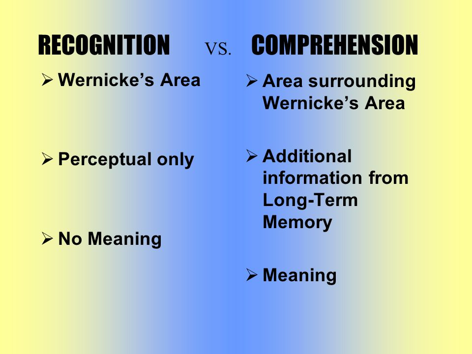  Wernicke's Area  Perceptual only  No Meaning  Area surrounding Wernicke's Area  Additional information from Long-Term Memory  Meaning RECOGNITION V S.