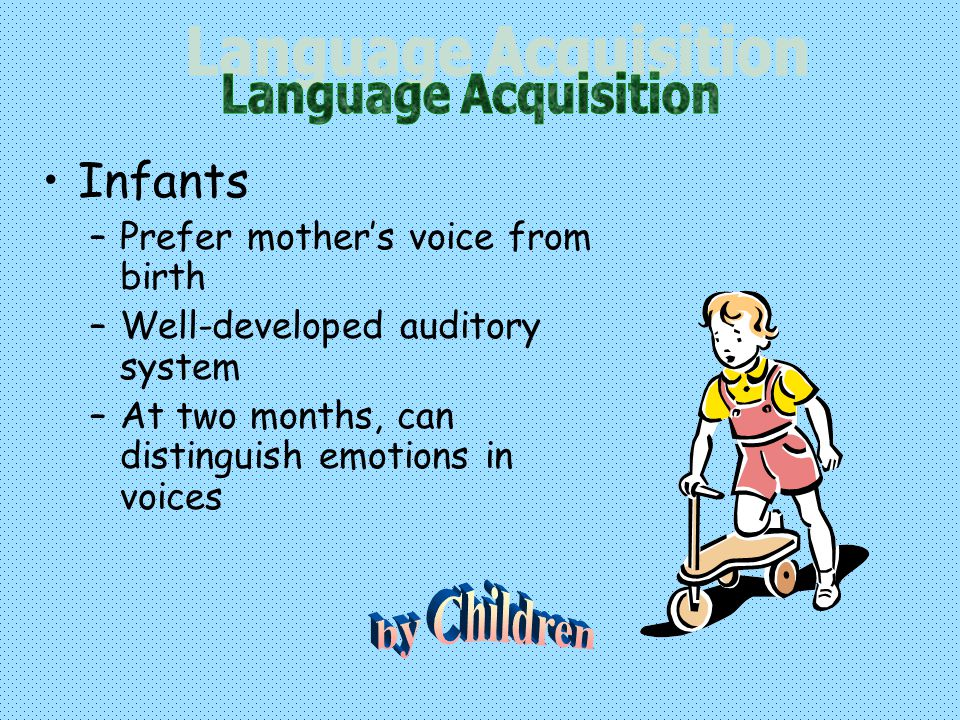 Infants –Prefer mother's voice from birth –Well-developed auditory system –At two months, can distinguish emotions in voices
