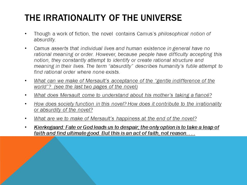 THE IRRATIONALITY OF THE UNIVERSE Though a work of fiction, the novel contains Camus's philosophical notion of absurdity.