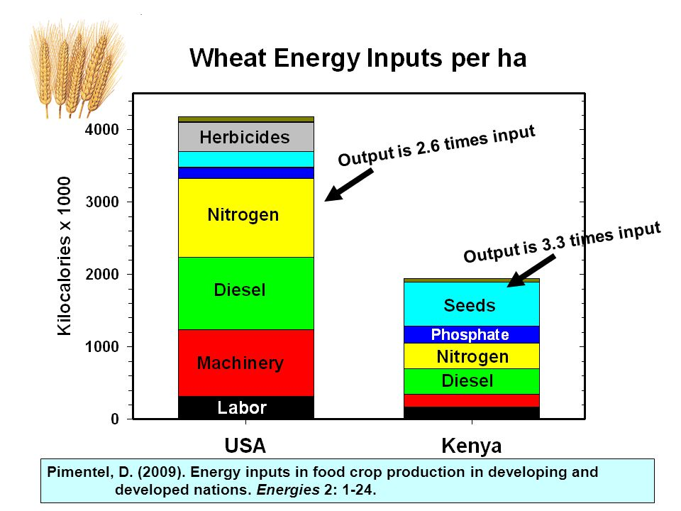 Pimentel, D.(2009). Energy inputs in food crop production in developing and developed nations.