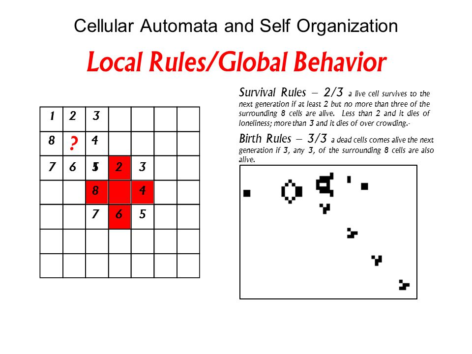 Cellular Automata and Self Organization Survival Rules – 2/3 a live cell survives to the next generation if at least 2 but no more than three of the surrounding 8 cells are alive.