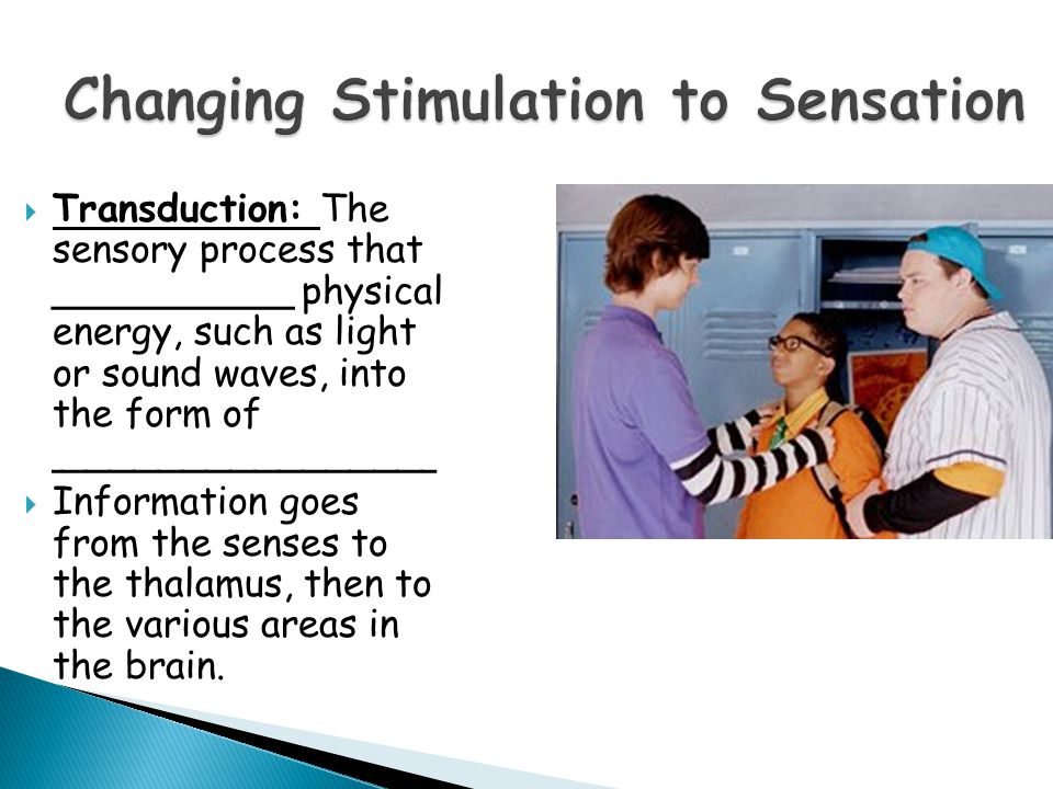 Changing Stimulation to Sensation  Transduction: The sensory process that __________ physical energy, such as light or sound waves, into the form of ________________  Information goes from the senses to the thalamus, then to the various areas in the brain.