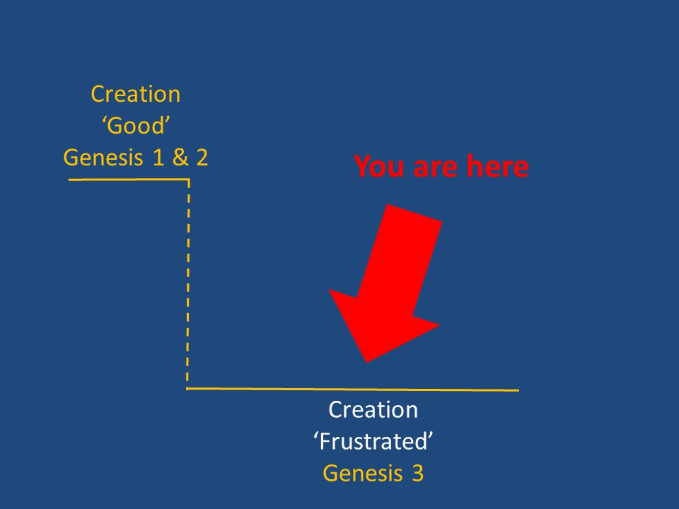 Creation 'Good' Genesis 1 & 2 Creation 'Frustrated' Genesis 3 You are here