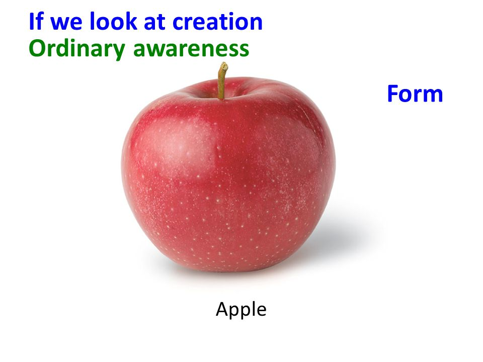 Apple Ordinary awareness Form If we look at creation