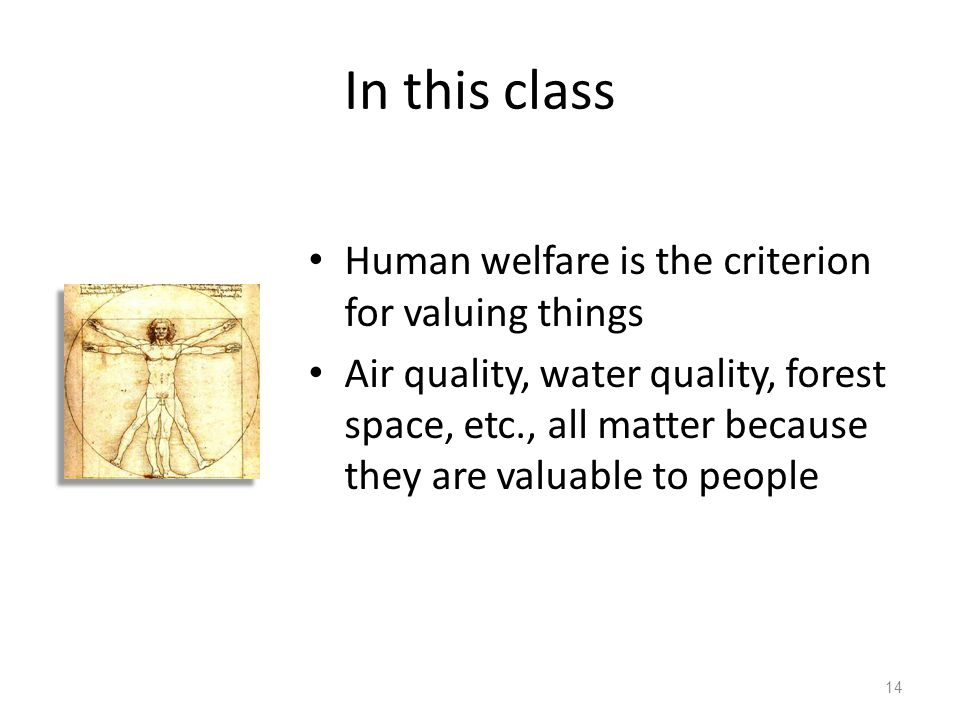 In this class Human welfare is the criterion for valuing things Air quality, water quality, forest space, etc., all matter because they are valuable to people 14