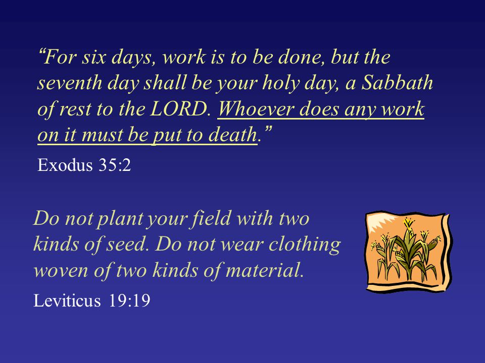 """""""For six days, work is to be done, but the seventh day shall be your holy day, a Sabbath of rest to the LORD. Whoever does any work on it must be put"""