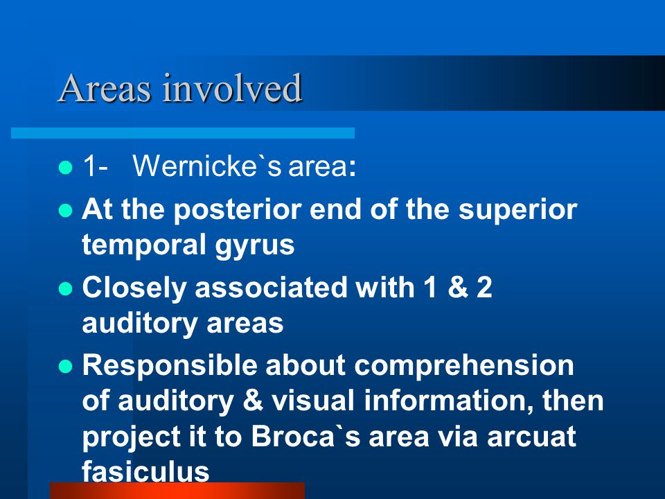 Areas involved 1- Wernicke`s area: At the posterior end of the superior temporal gyrus Closely associated with 1 & 2 auditory areas Responsible about comprehension of auditory & visual information, then project it to Broca`s area via arcuat fasiculus