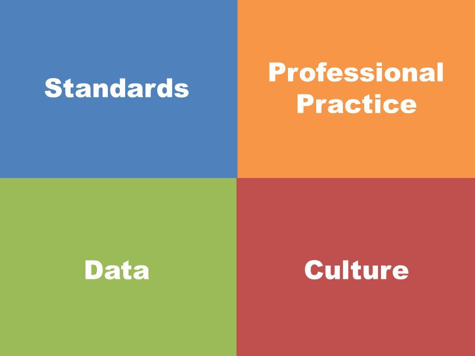 Standards- based, revised, upgraded, realigned units Professional Practice DataCulture