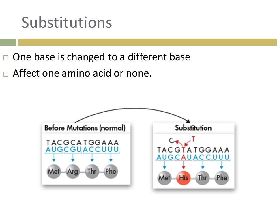 Substitutions  One base is changed to a different base  Affect one amino acid or none.